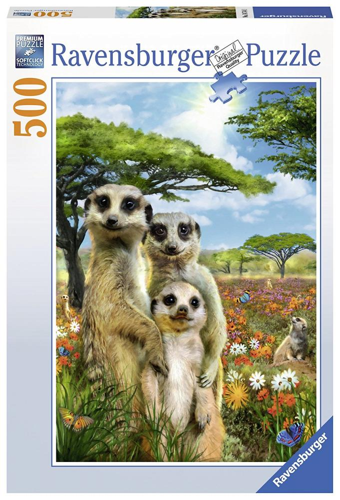 Romp.Mischievous Meerkats 500p