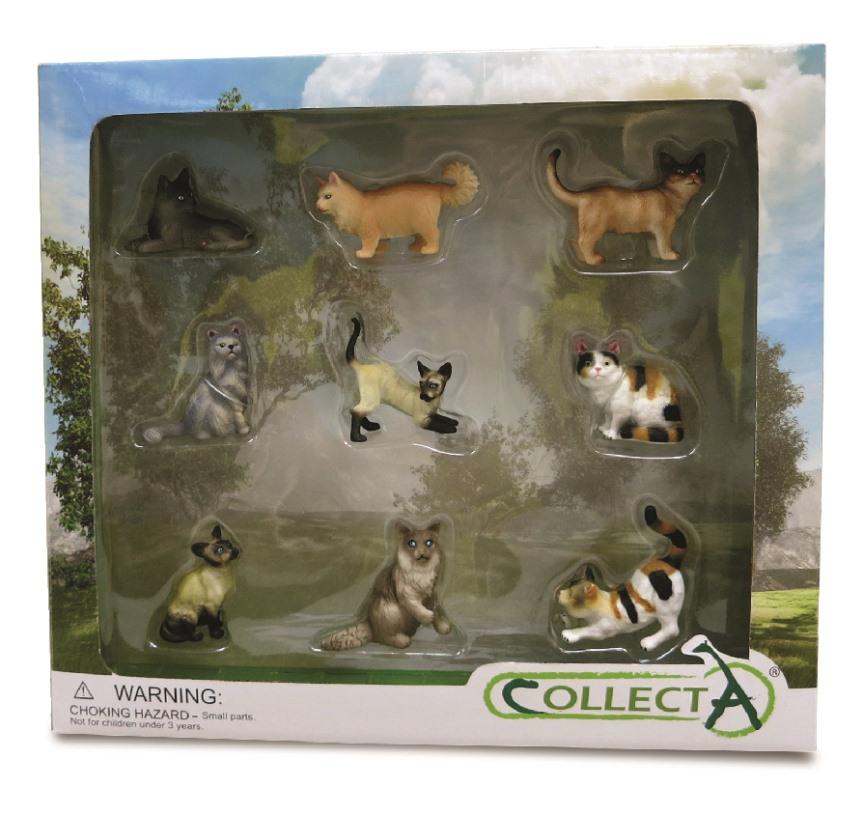 Set 9 piezas Gatos